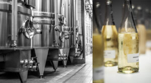 Le champagne ou l'art de l'assemblage - Champmarket