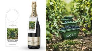 Voici venu le temps des vendanges par les champagnes Moët & Chandon