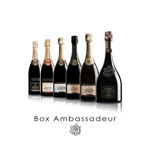 Champagne Duval-Leroy Box Ambassadeur 6 bouteilles - Champmarket